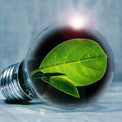 Consumi energetici e abitudini degli italiani fra risparmio e sostenibilità